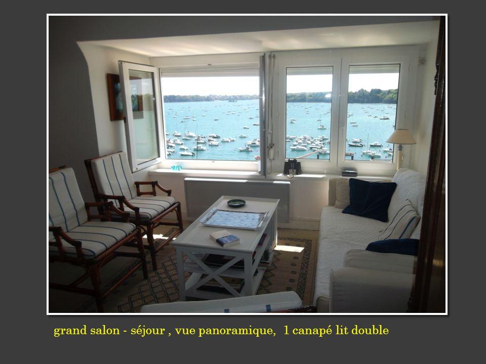 grand salon - séjour , vue panoramique, 1 canapé lit double
