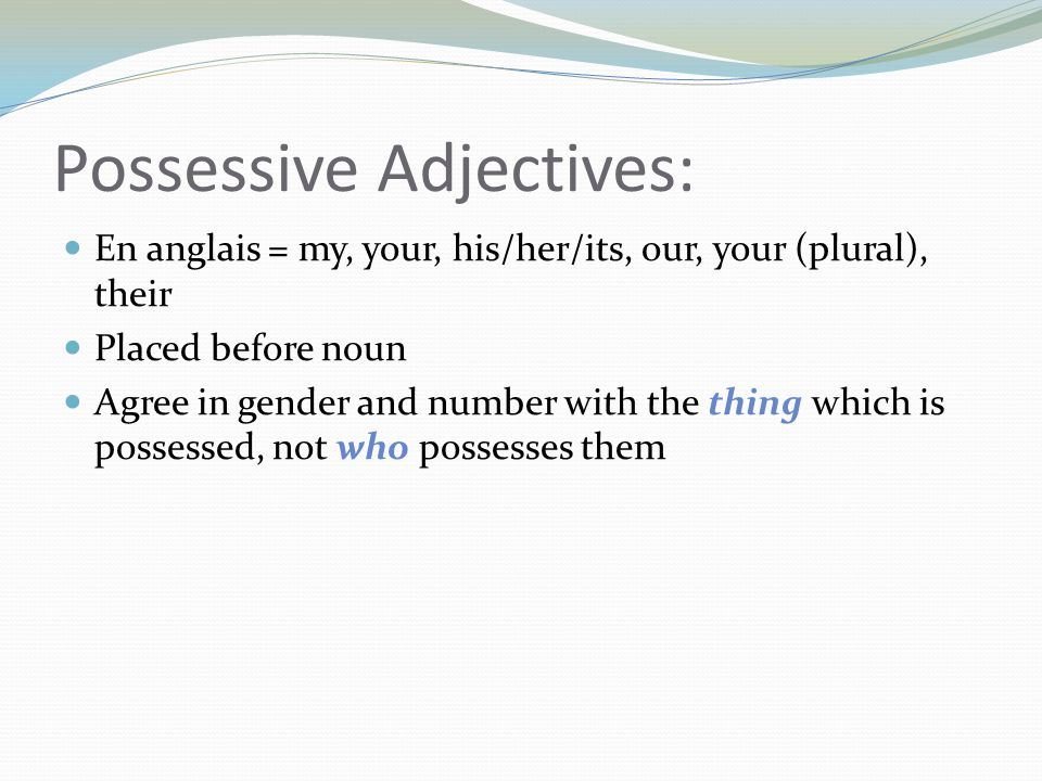 Possessive Adjectives: