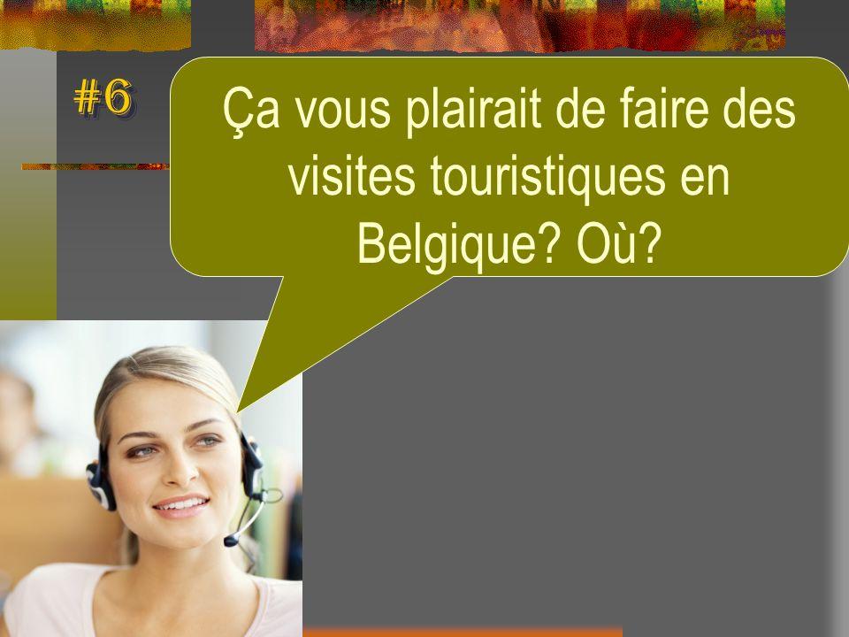 Ça vous plairait de faire des visites touristiques en Belgique Où