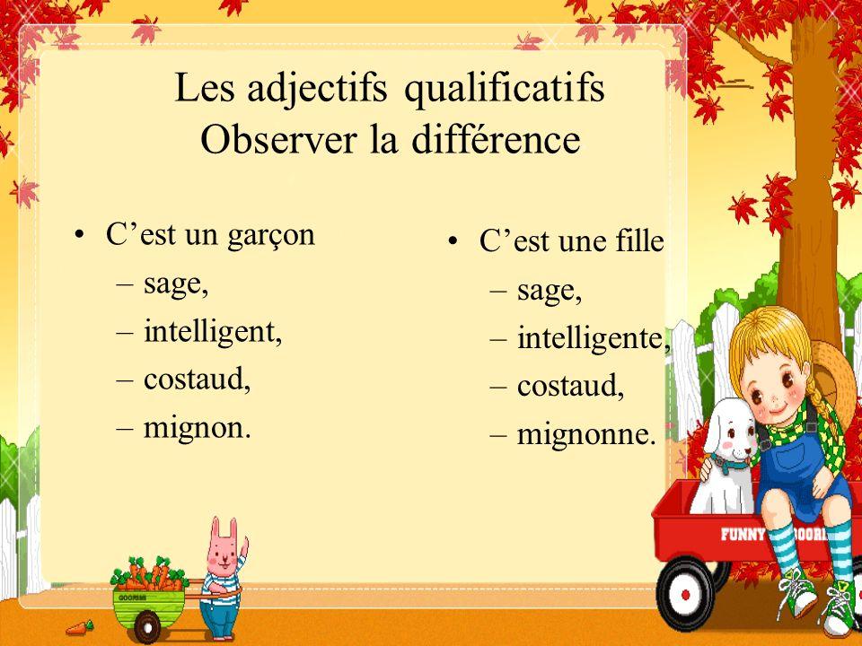 Les adjectifs qualificatifs Observer la différence