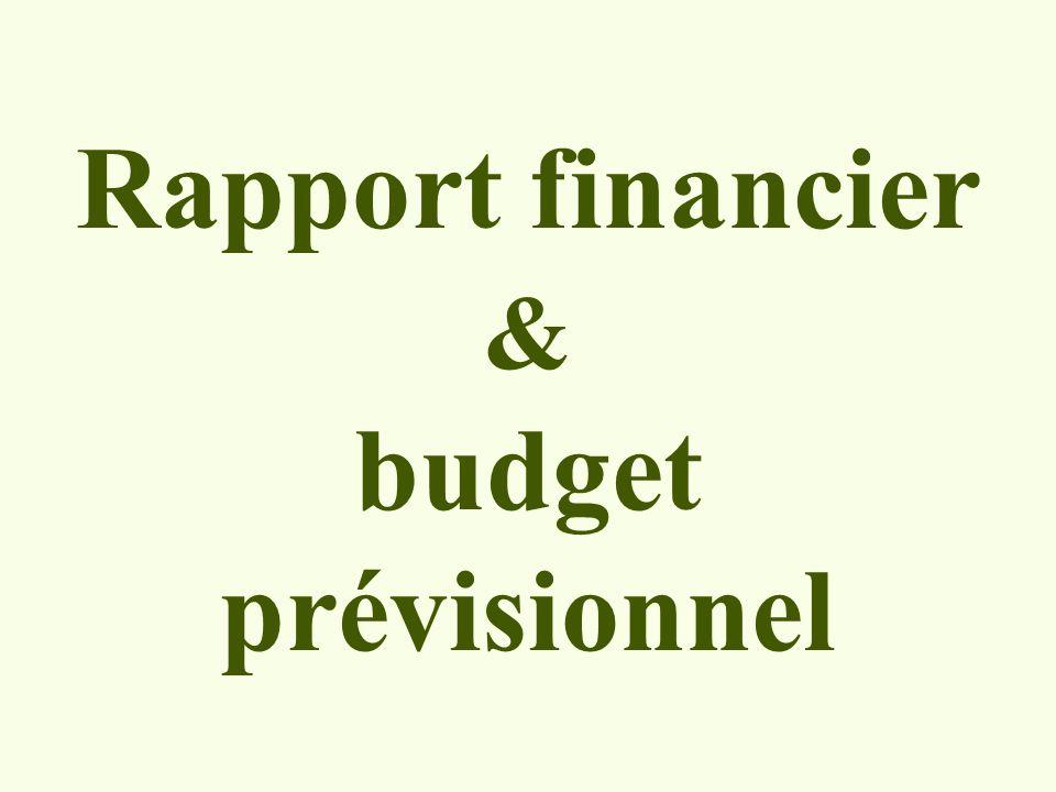 Rapport financier & budget prévisionnel
