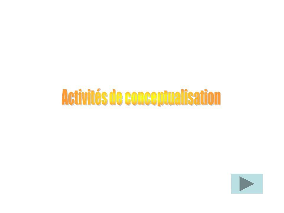 Activités de conceptualisation