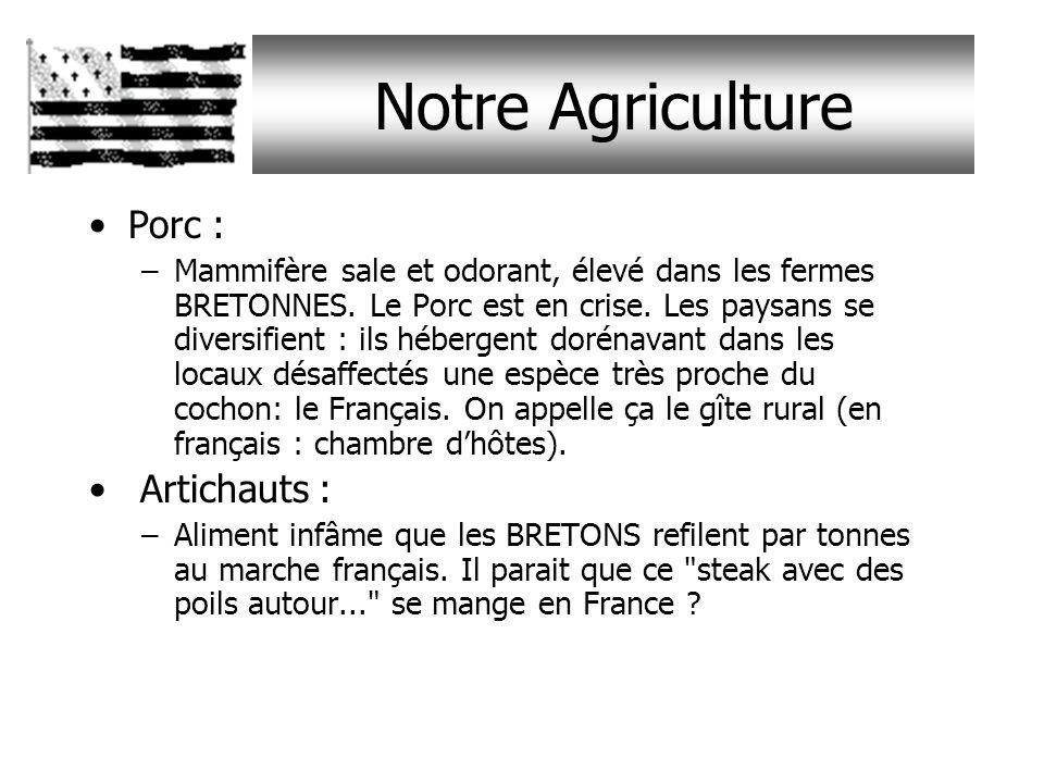 Notre Agriculture Porc : Artichauts :