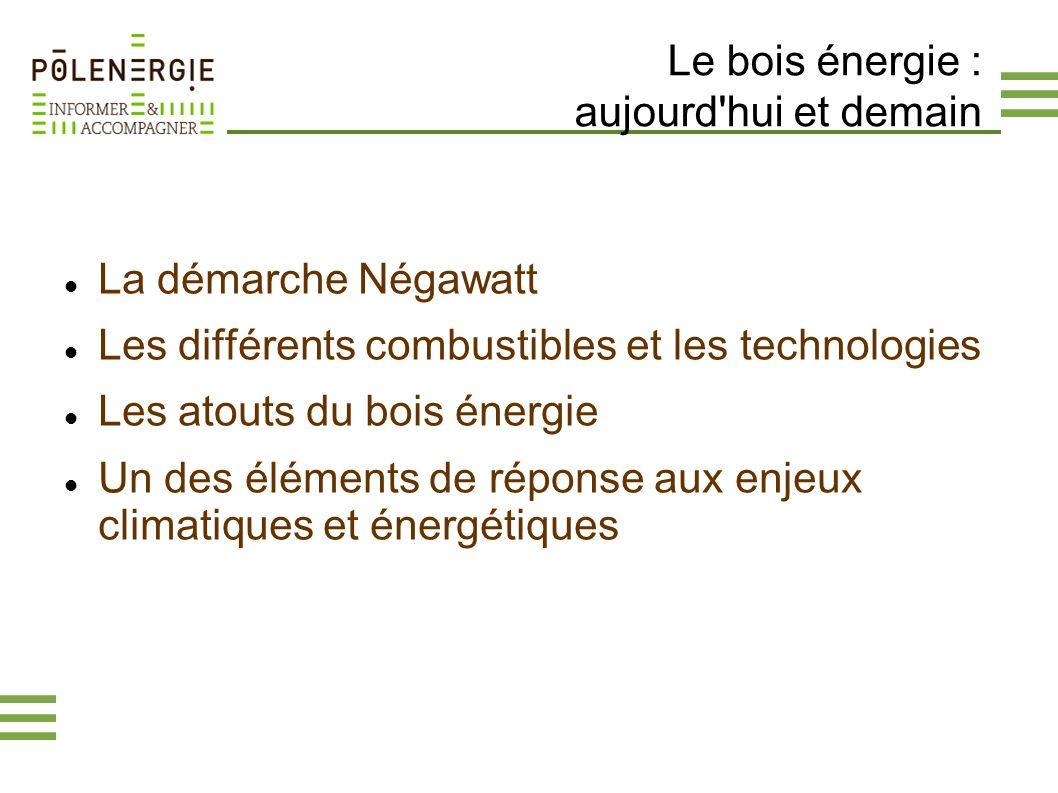 Le bois énergie : aujourd hui et demain