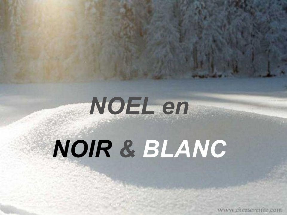 NOEL en NOIR & BLANC Cliquez pour débuter