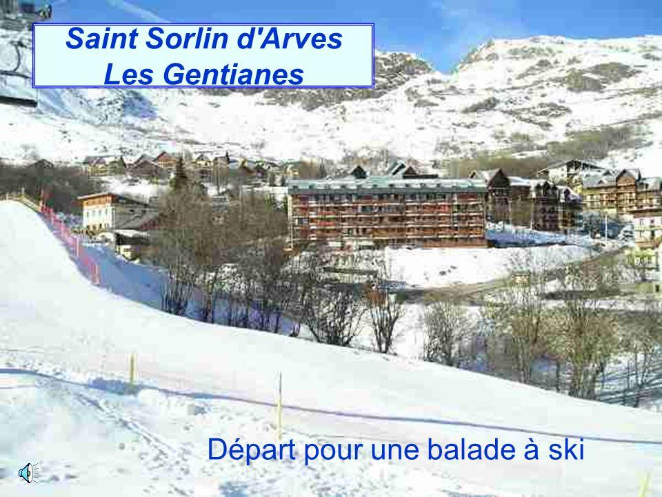 Saint Sorlin d Arves Les Gentianes