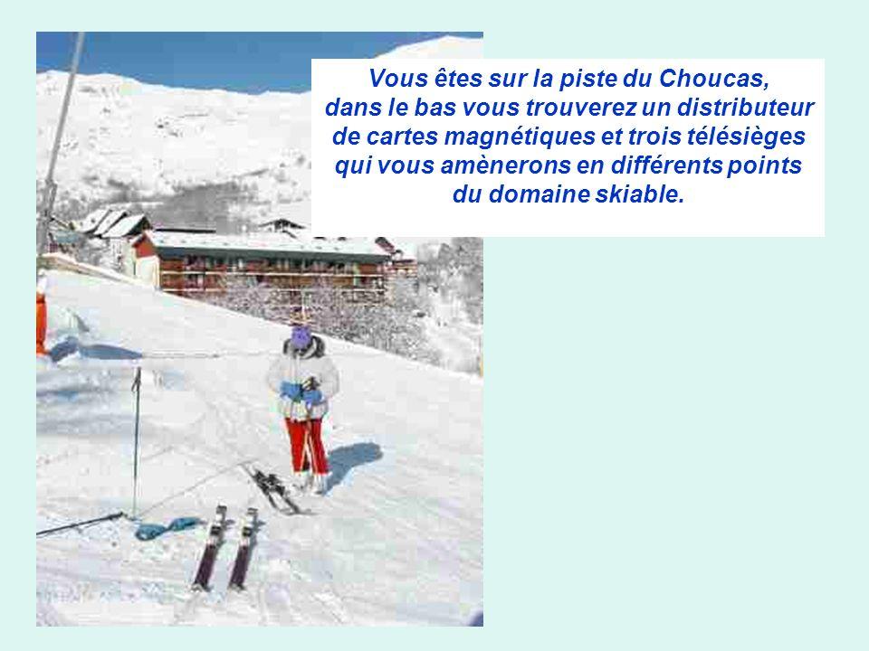 Vous êtes sur la piste du Choucas, dans le bas vous trouverez un distributeur de cartes magnétiques et trois télésièges qui vous amènerons en différents points du domaine skiable.