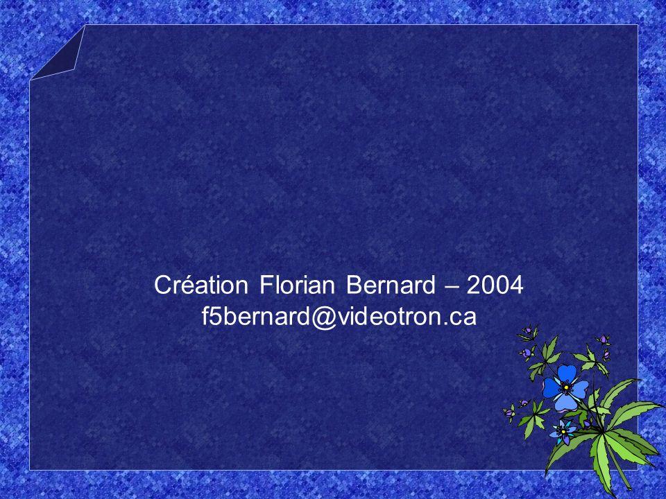 Création Florian Bernard – 2004 f5bernard@videotron.ca