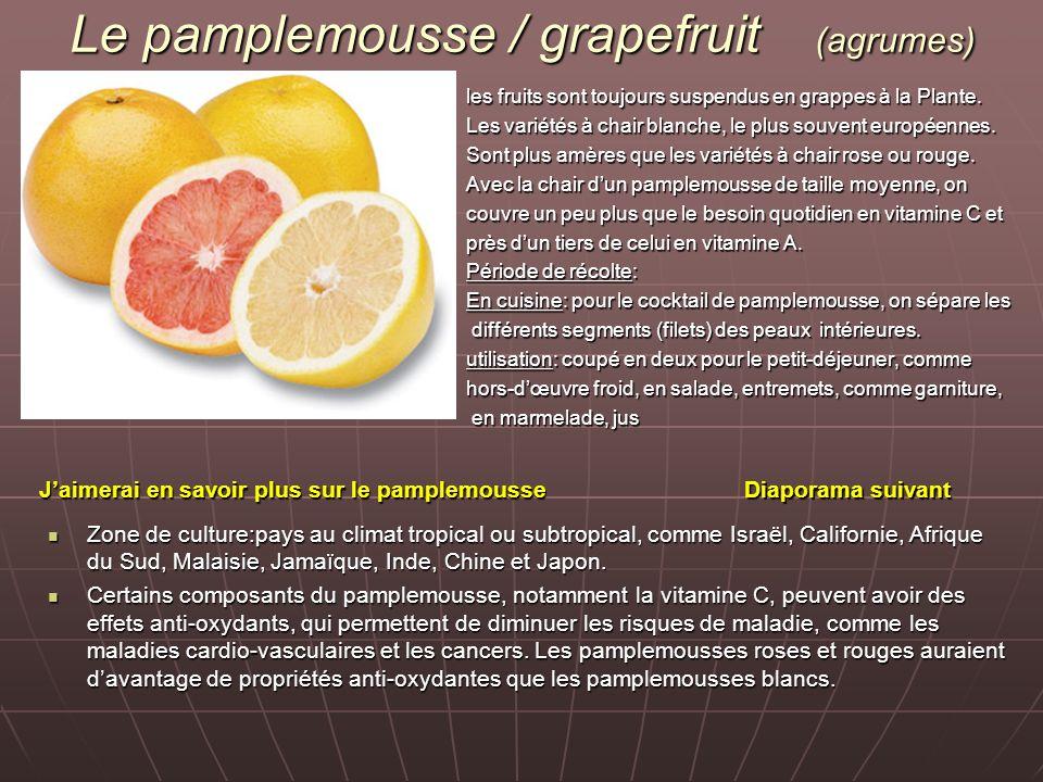 Le pamplemousse / grapefruit (agrumes)