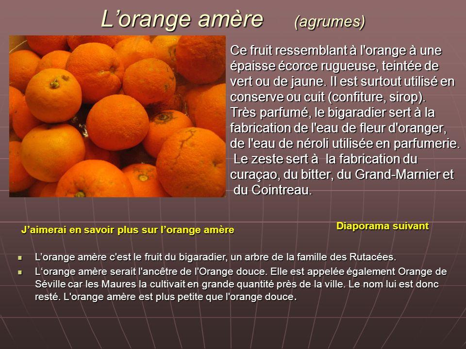 L'orange amère (agrumes)
