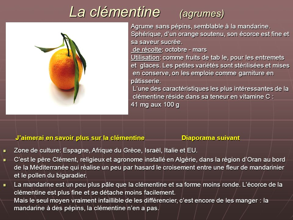 La clémentine (agrumes)
