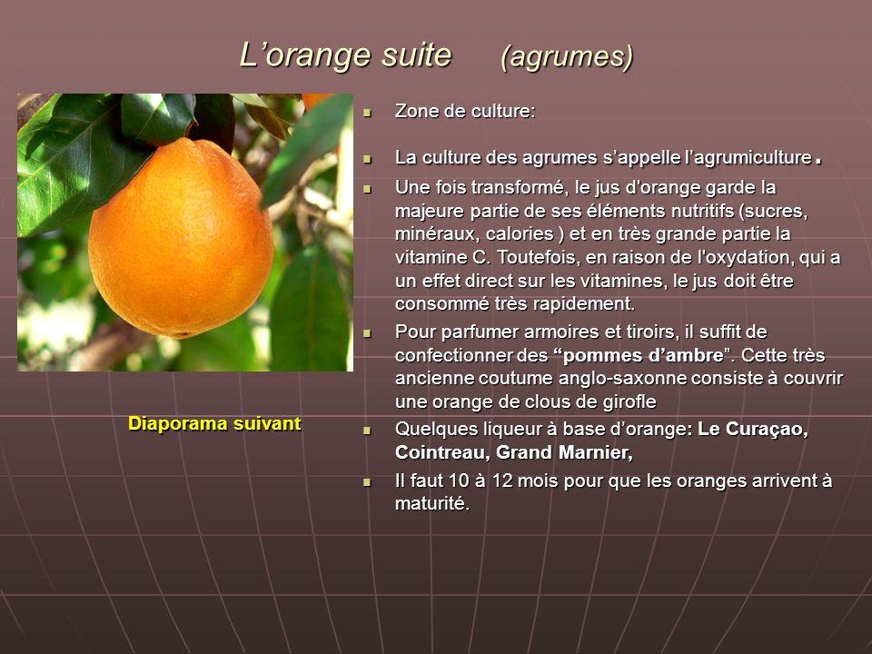 L'orange suite (agrumes)
