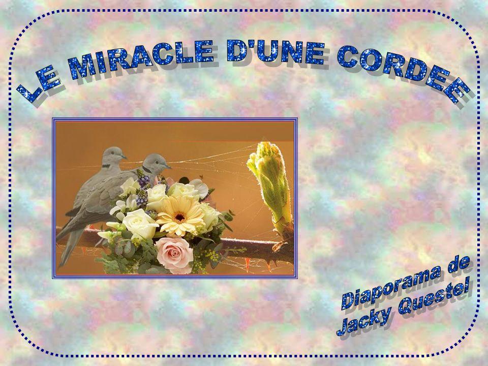 LE MIRACLE D UNE CORDEE Diaporama de Jacky Questel