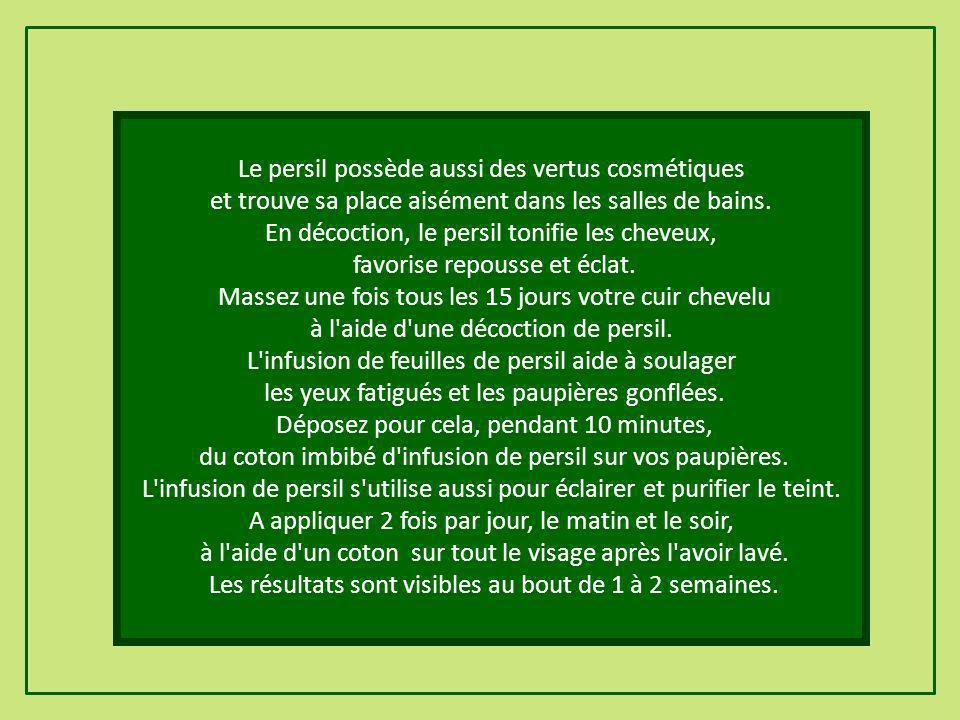 Le persil possède aussi des vertus cosmétiques