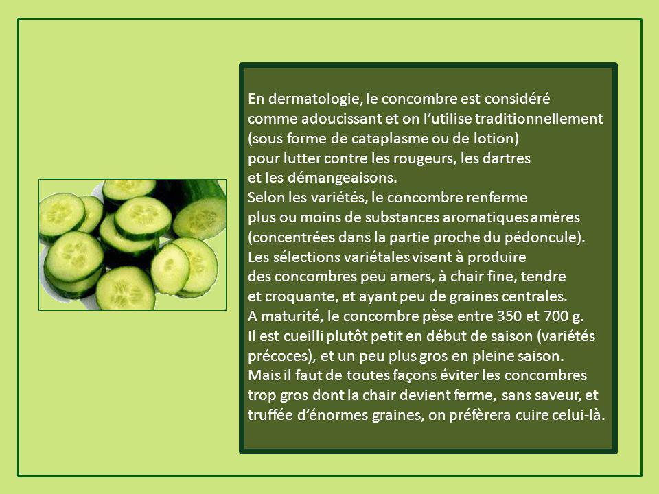 En dermatologie, le concombre est considéré