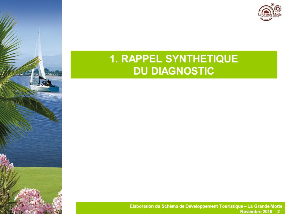 1. RAPPEL SYNTHETIQUE DU DIAGNOSTIC
