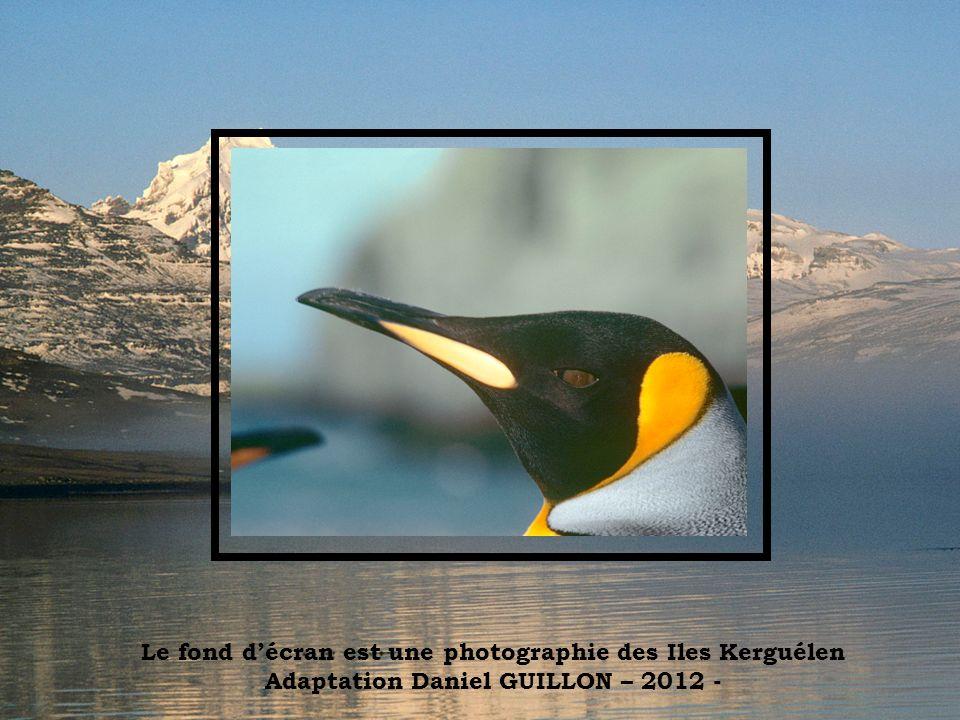 Le fond d'écran est une photographie des Iles Kerguélen