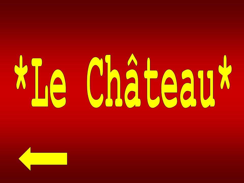 *Le Château*