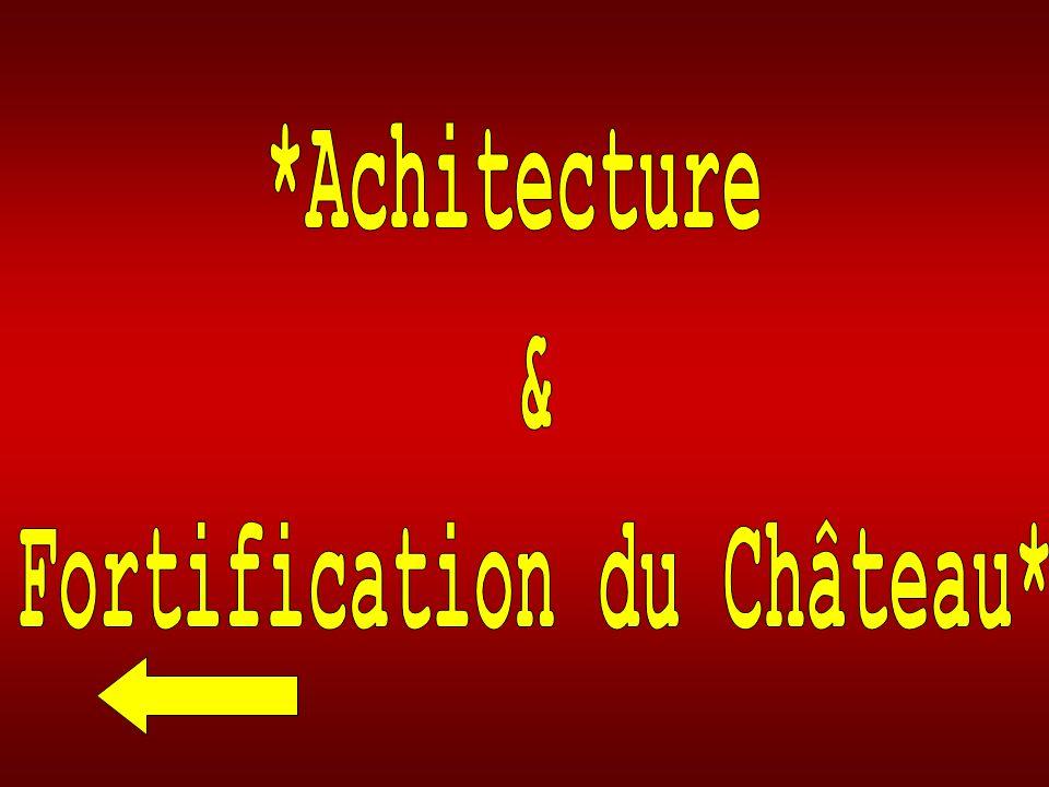 Fortification du Château*