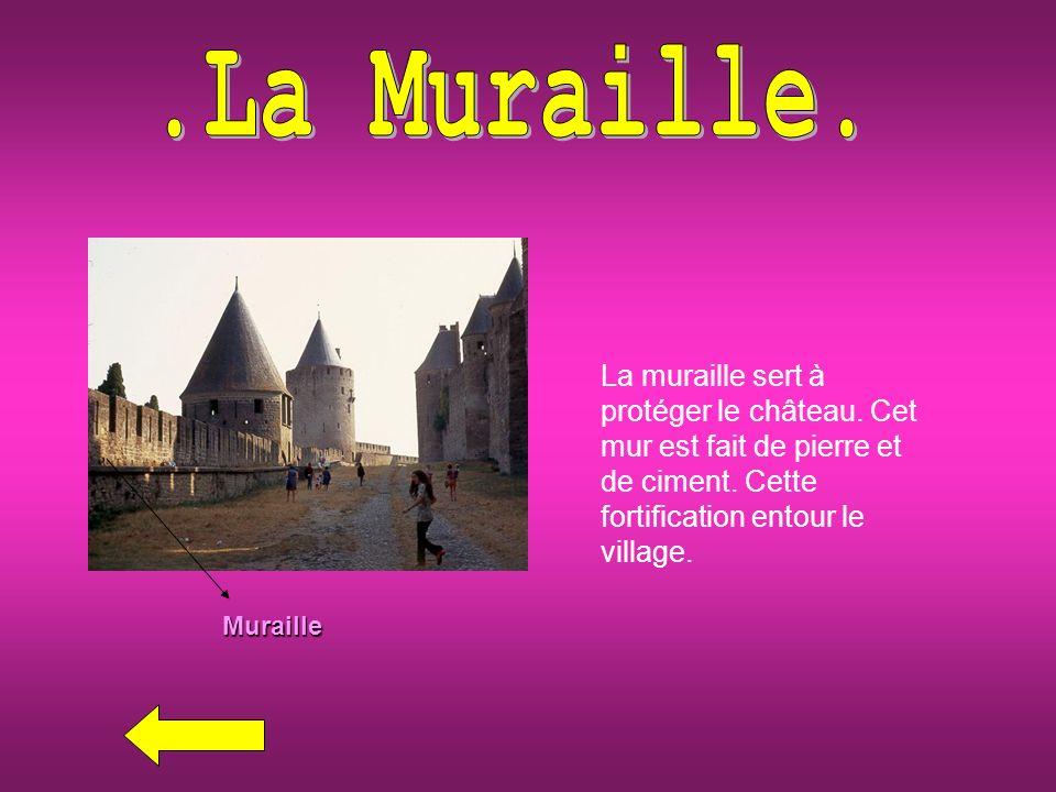 .La Muraille. La muraille sert à protéger le château. Cet mur est fait de pierre et de ciment. Cette fortification entour le village.