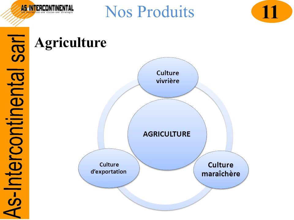 Culture d'exportation