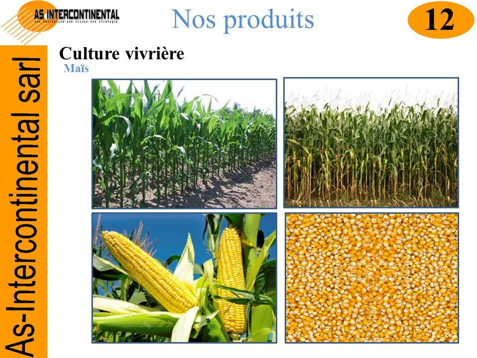 Nos produits 12 Culture vivrière Maïs