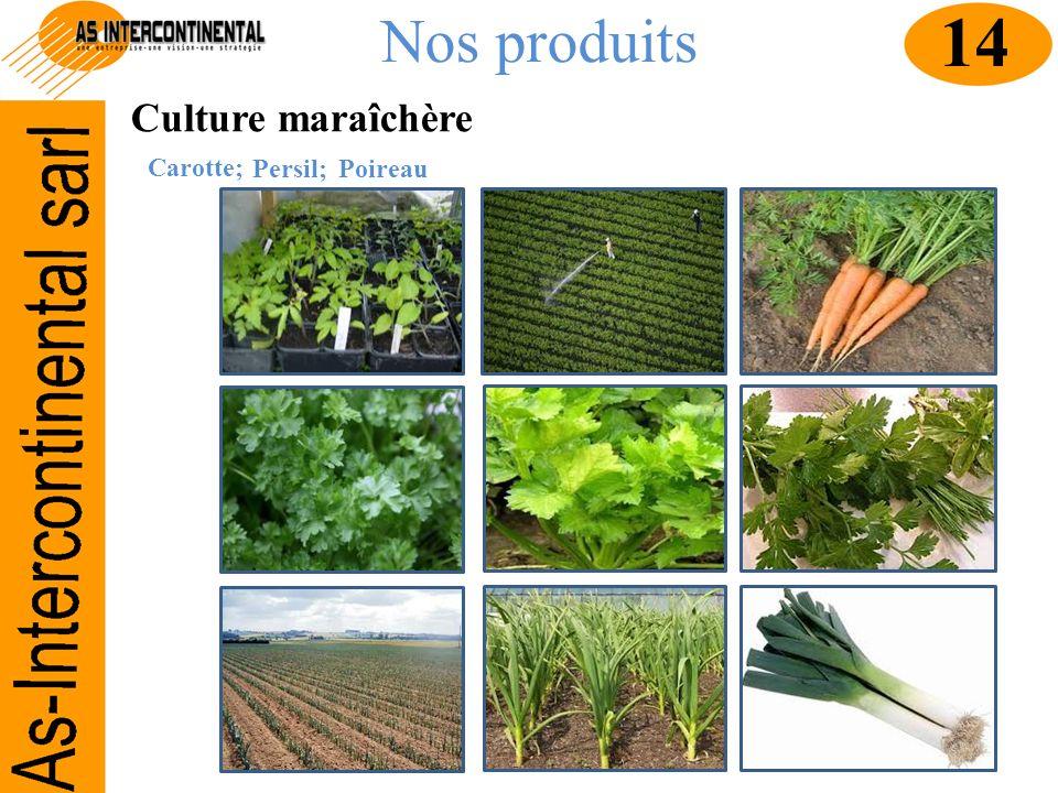 Nos produits 14 Culture maraîchère Carotte; Persil; Poireau