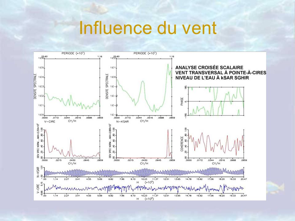 Influence du vent