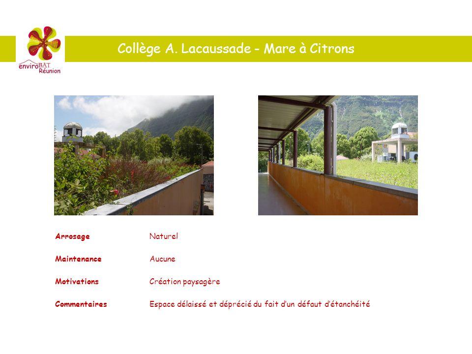 Collège A. Lacaussade - Mare à Citrons