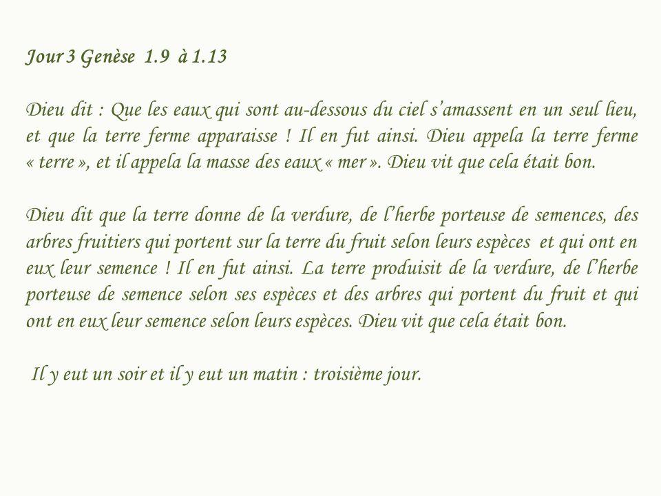 Jour 3 Genèse 1.9 à 1.13