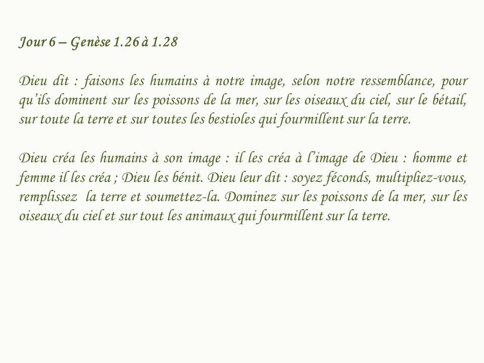 Jour 6 – Genèse 1.26 à 1.28