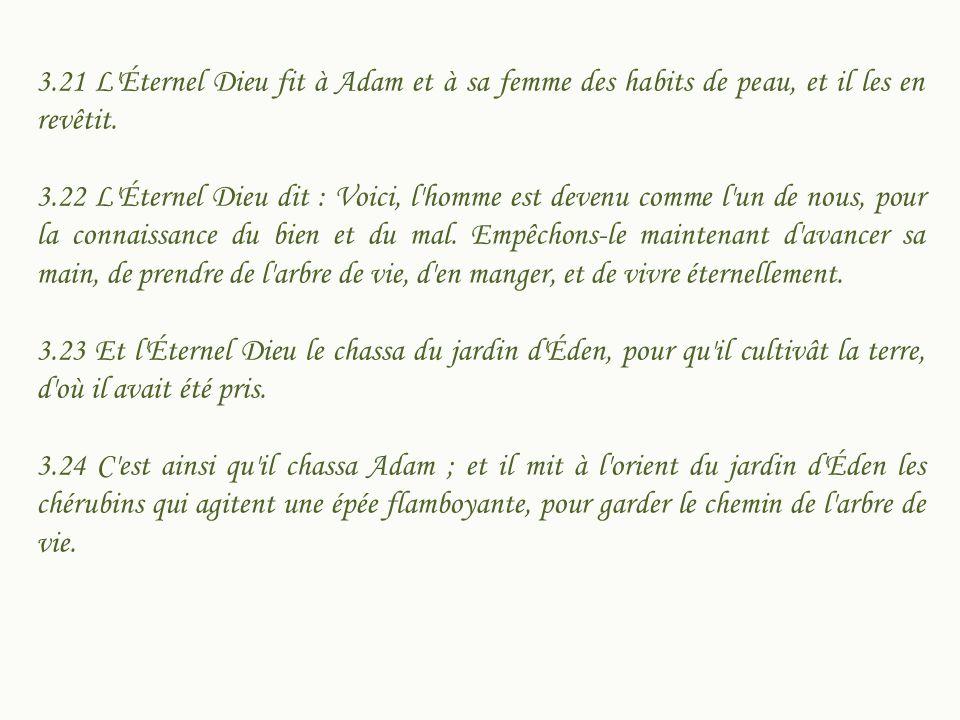 3.21 L Éternel Dieu fit à Adam et à sa femme des habits de peau, et il les en revêtit.