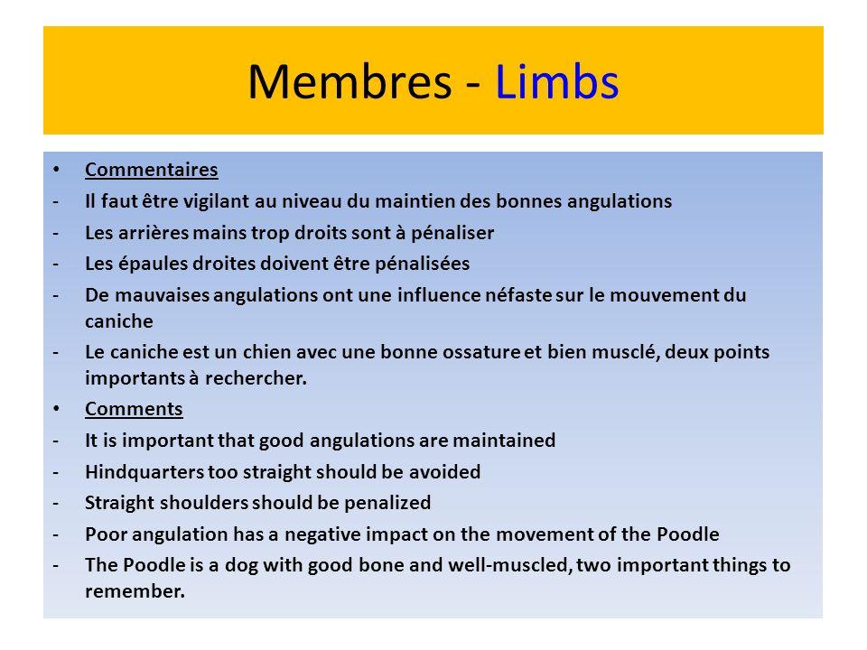Membres - Limbs Commentaires