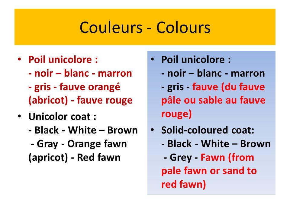 Couleurs - Colours Poil unicolore : - noir – blanc - marron - gris - fauve orangé (abricot) - fauve rouge.