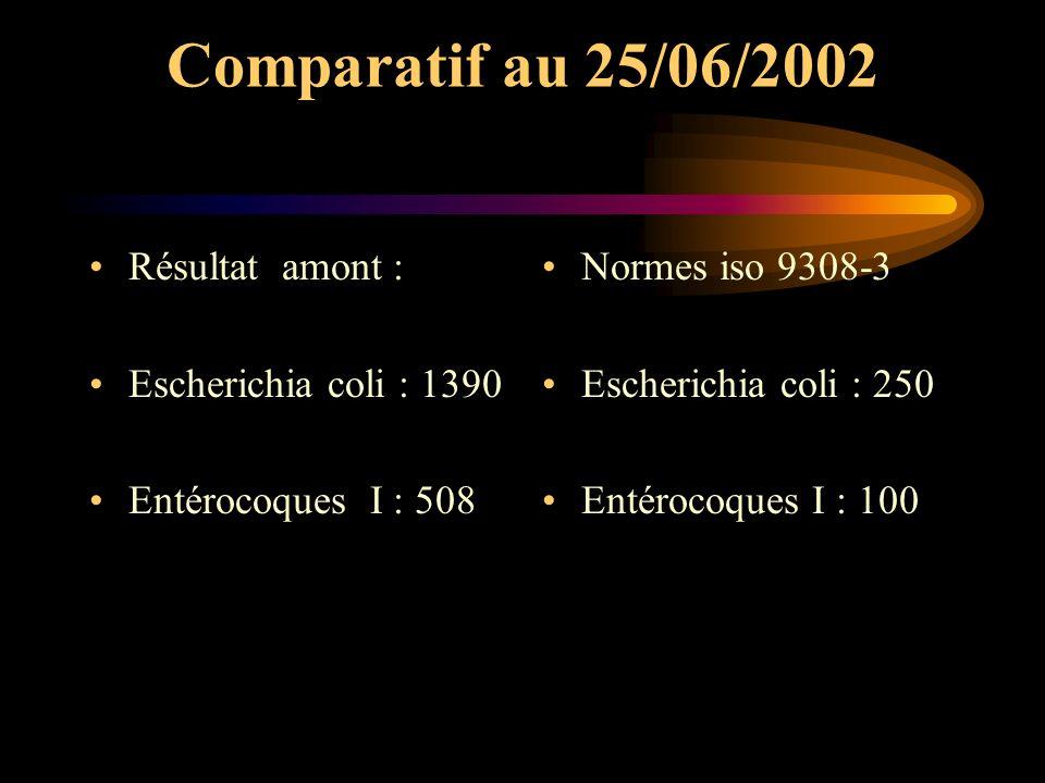 Comparatif au 25/06/2002 Résultat amont : Escherichia coli : 1390