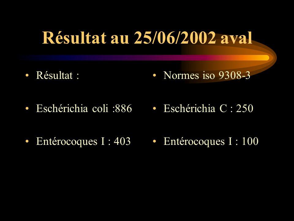 Résultat au 25/06/2002 aval Résultat : Eschérichia coli :886