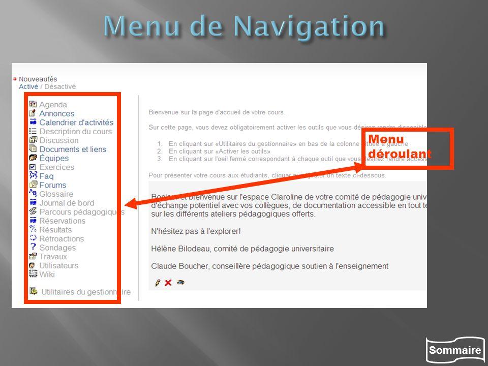Menu de Navigation Menu déroulant