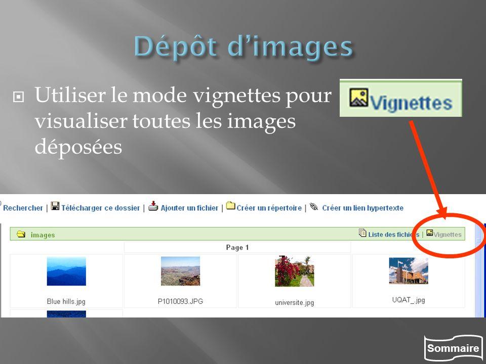 Dépôt d'images Utiliser le mode vignettes pour visualiser toutes les images déposées