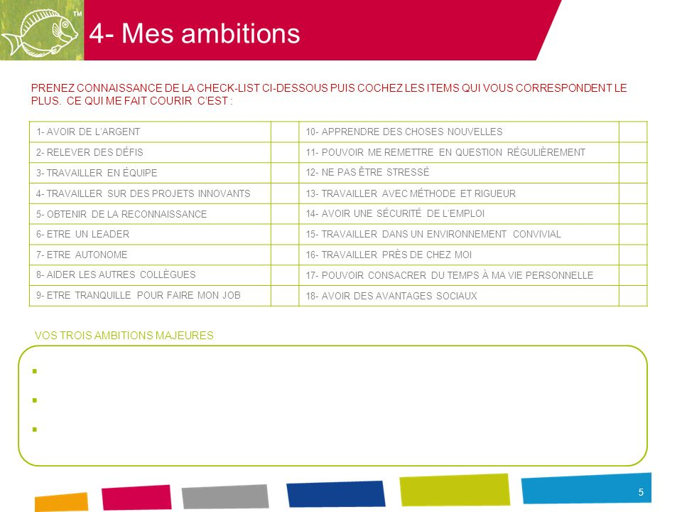4- Mes ambitions