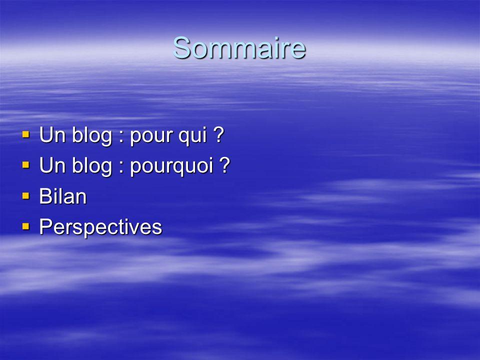 Sommaire Un blog : pour qui Un blog : pourquoi Bilan Perspectives