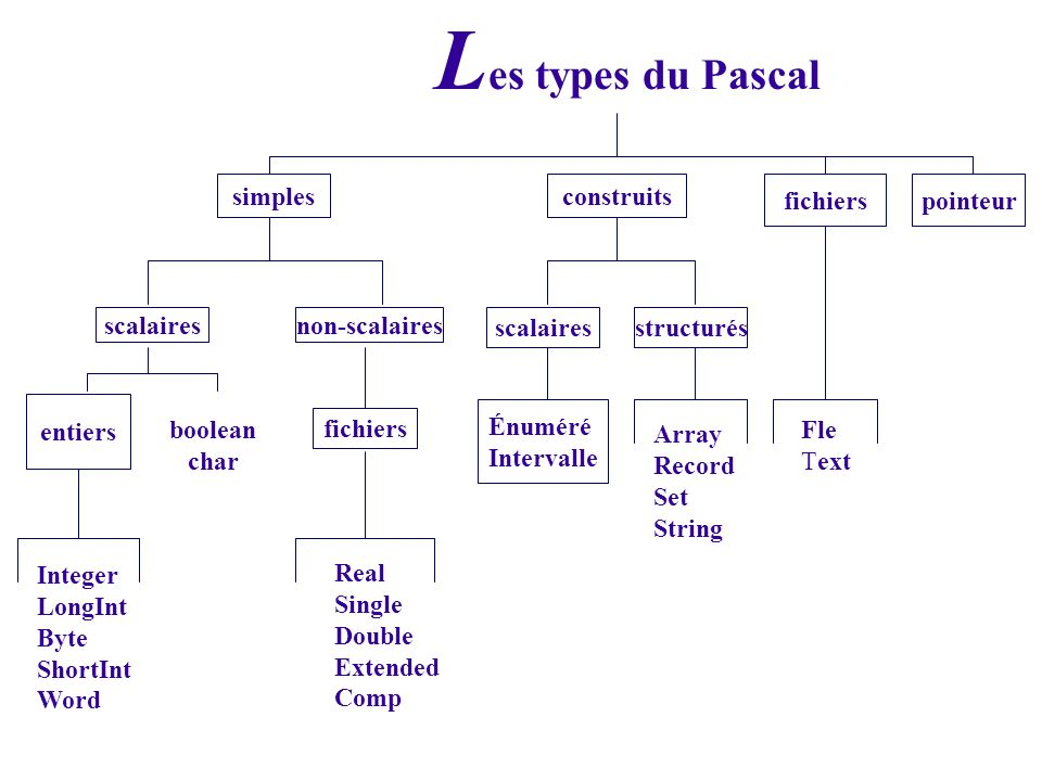 Les types du Pascal simples construits fichiers pointeur scalaires