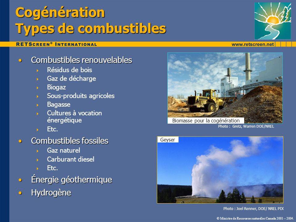 Cogénération Types de combustibles