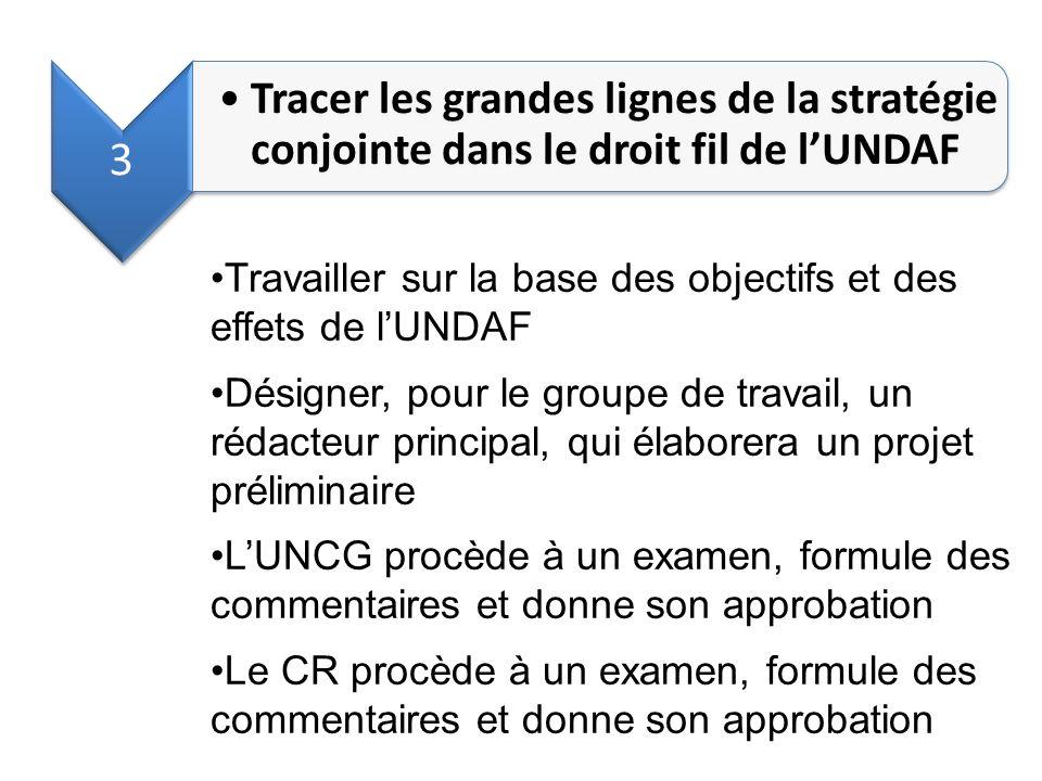 3 Tracer les grandes lignes de la stratégie conjointe dans le droit fil de l'UNDAF. Travailler sur la base des objectifs et des effets de l'UNDAF.