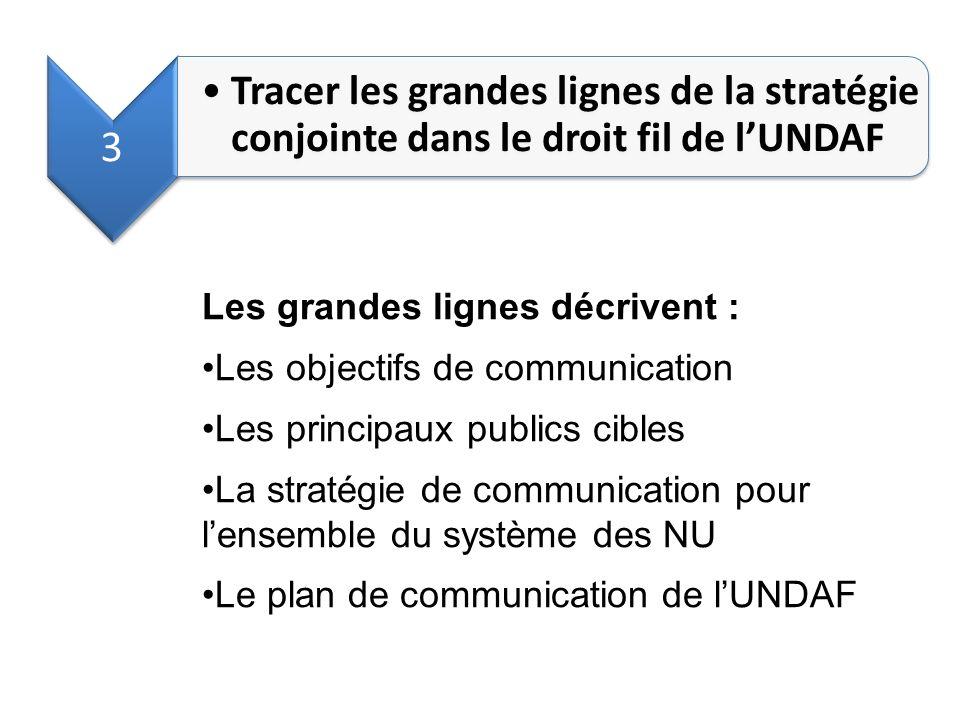 3 Tracer les grandes lignes de la stratégie conjointe dans le droit fil de l'UNDAF. Les grandes lignes décrivent :