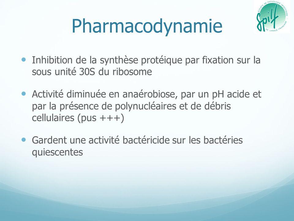 Pharmacodynamie Inhibition de la synthèse protéique par fixation sur la sous unité 30S du ribosome.