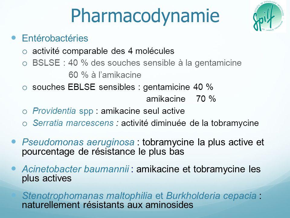Pharmacodynamie Entérobactéries