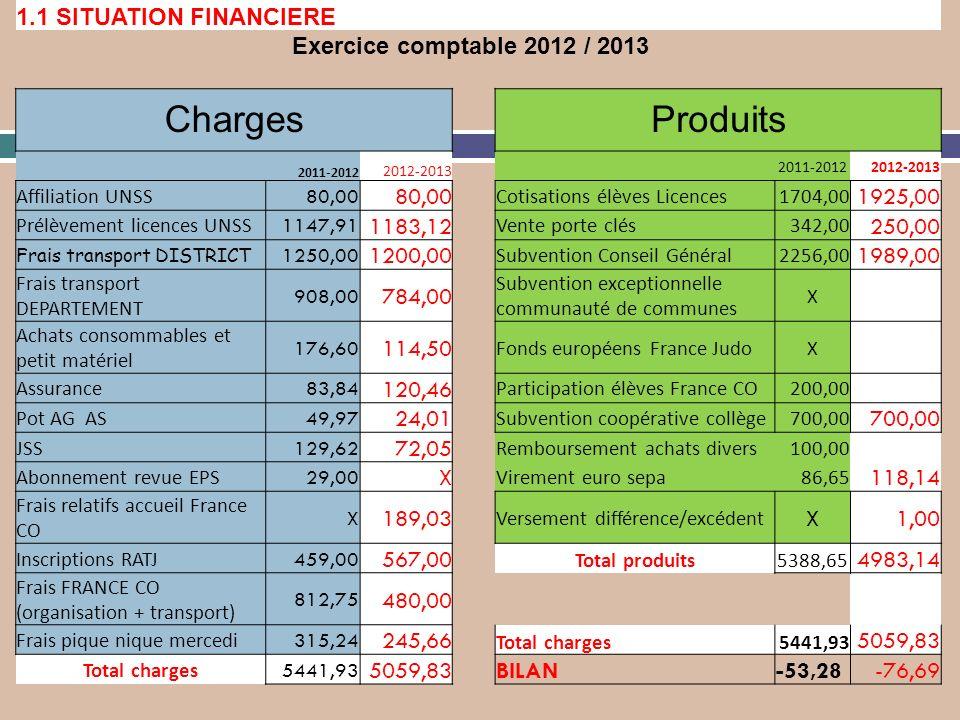 Charges Produits 1.1 SITUATION FINANCIERE