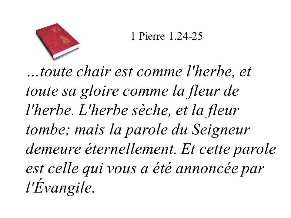 1 Pierre 1.24-25