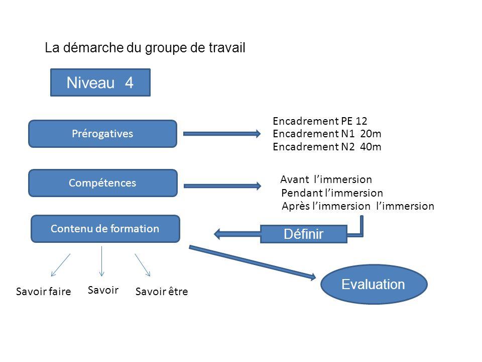 Niveau 4 La démarche du groupe de travail Définir Evaluation