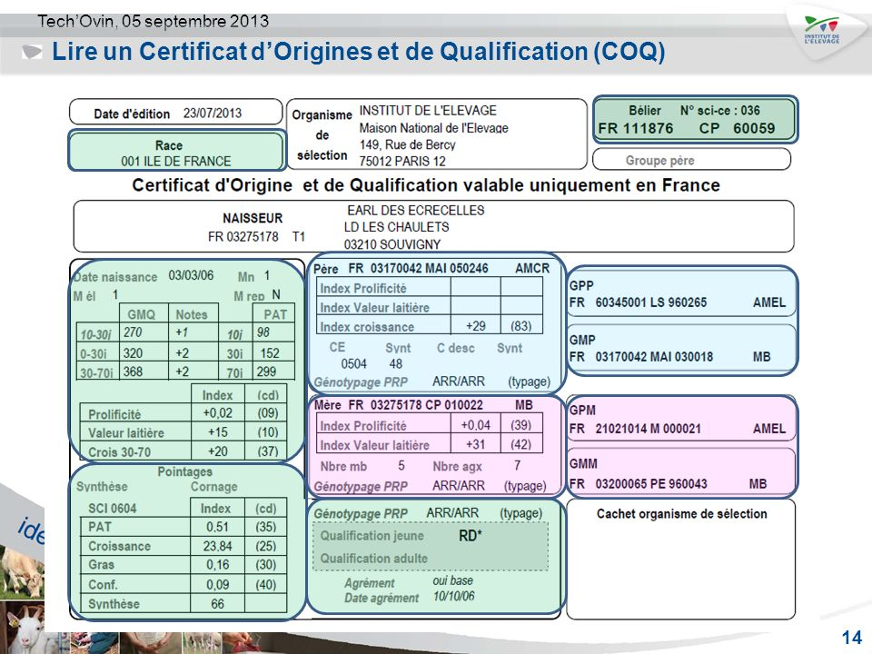 Lire un Certificat d'Origines et de Qualification (COQ)